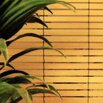 Солнцезащитные ролеты из бамбука на окна: какие у них преимущества?